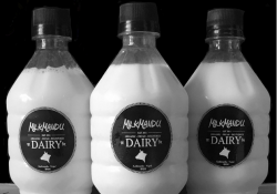 milkmandu, free home delivery of milk
